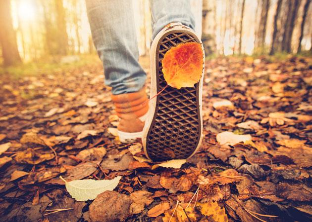 Escapadas de otoño: principal